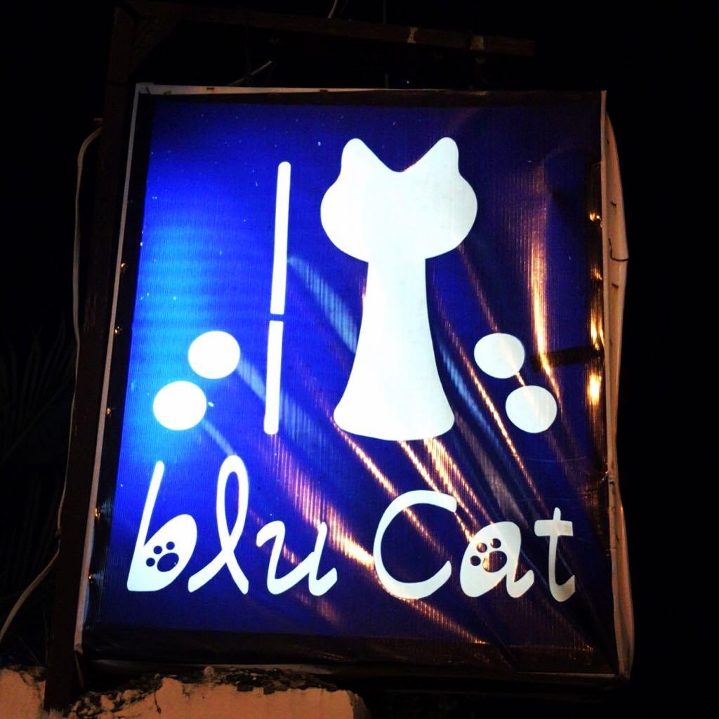 セブ島随一のエンターテイメントBar「blu Cat」