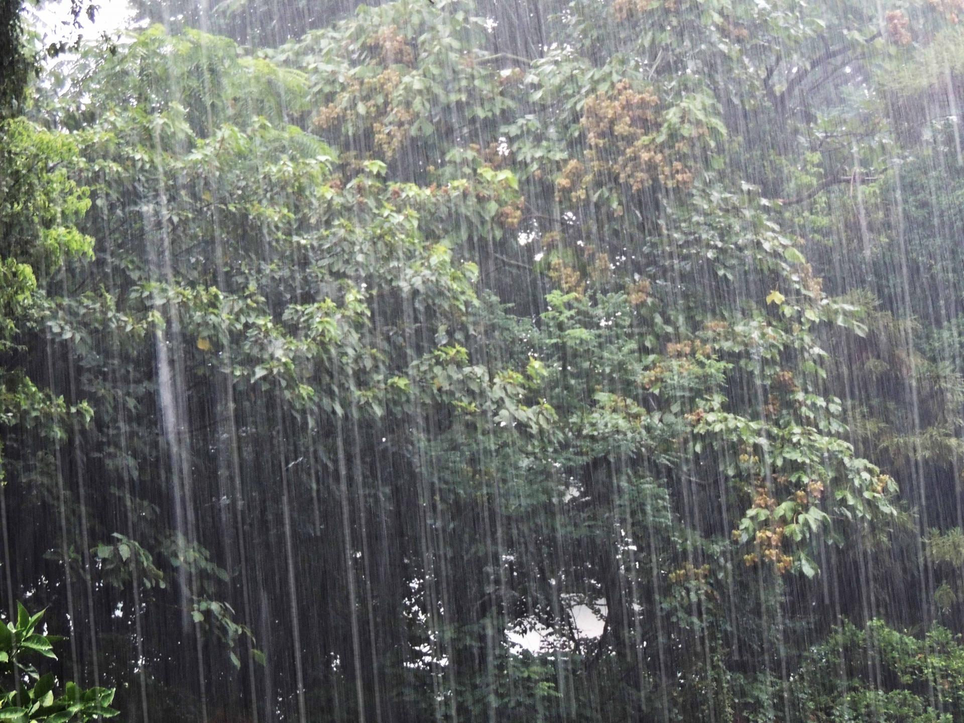 セブ島の雨季を快適に乗り切ろう